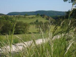 Unterwegs im Tal der Schwarzen Laber