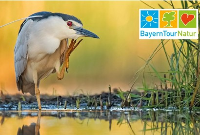 BayernTourNatur – Naturführungen in Bayern