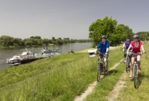 Radfahrer auf dem Donau-Ilz-Radweg