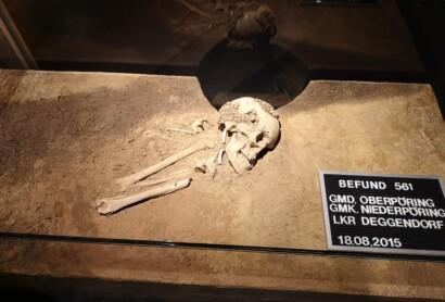 Neue Attraktion am Donauradweg im Museum Quintana: Die Tote von Niederpöring