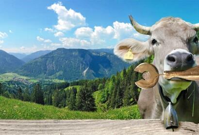 ADAC Tourismuspreis Bayern 2020