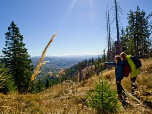 Der Rachel ist bei Besuchern des Nationalparks Bayerischer Wald ein beliebtes Ziel.