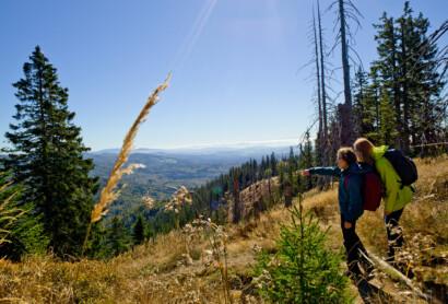 Akzeptanz des Nationalparks Bayerischer Wald steigt weiter an