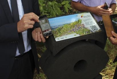 Oberpfälzer Wald Vorstellung der Infostelen Natur Navi Detail der Infotafel