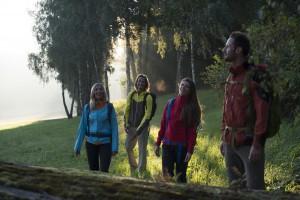 Goldsteig-Wandern im Herbst
