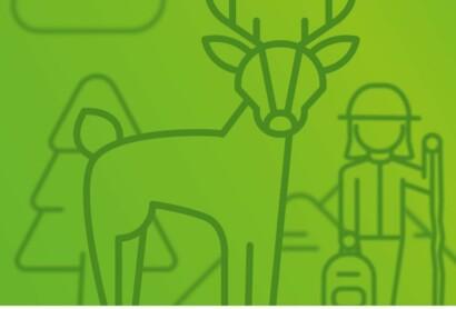 Nachhaltigkeit: Mensch und Natur im Gleichgewicht