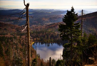 CNN listet die 20 schönsten Orte Europas: darunter der Bayerische Wald