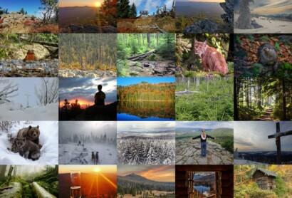 Endspurt beim wilden Nationalpark-Fotowettbewerb