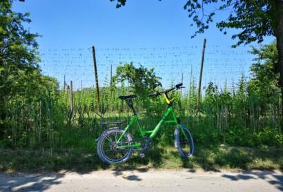 Save the Date: Netzwerk nachhaltiger Radtourismus in Ostbayern