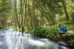 Goldsteig-Wandern - im Bild: Waldnaabtal im Oberpfälzer Wald