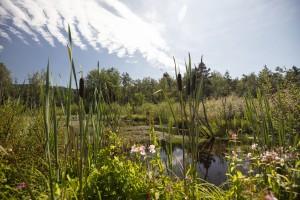 Natur-Art-Park Arrach