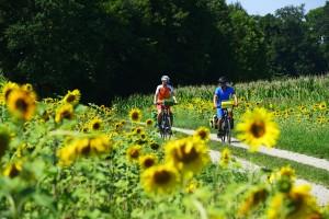 Radfahren im Bayerischen Golf- und Thermenland