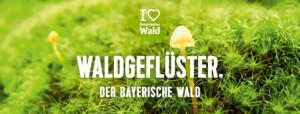 Kampagne Bayerischer Wald