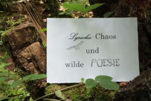 Bild mit dem Motto zum Poetry Slam des Nationalparks: Lyrisches Chaos und wilde Poesie