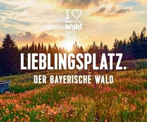 Lieblingsplatz Bayerischer Wald