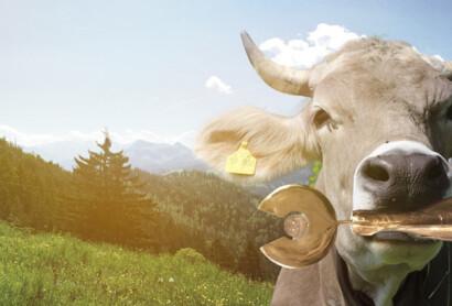 ADAC Tourismuspreis Bayern 2021