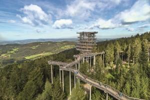 Waldturm beim Waldwipfelweg