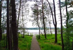 Neubäuer See