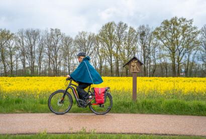 Niederbayerntour, Radrunden und Co auf Süddeutsche Online