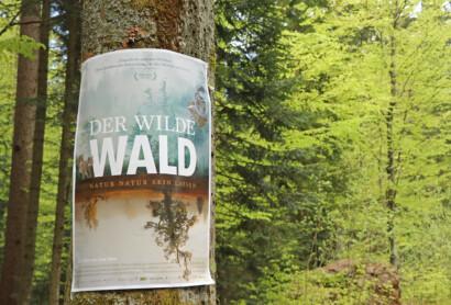 """""""Der wilde Wald"""" feiert Premiere"""