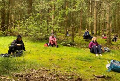 Kursangebote der Deutschen Akademie für Waldbaden und Gesundheit