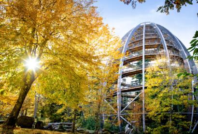 Herbst-Ausflugstipp
