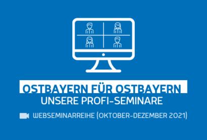 """Neu: Webseminarreihe """"Ostbayern für Ostbayern: Unsere Profi-Seminare"""""""